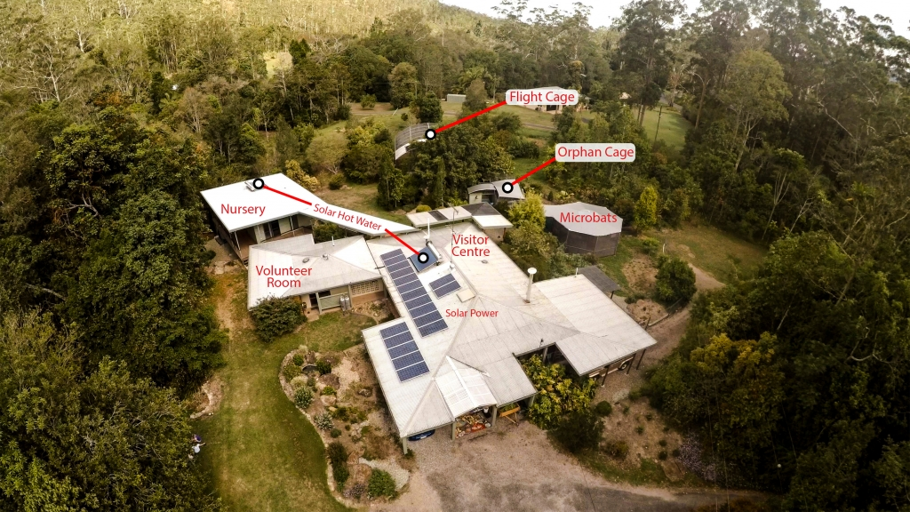 aerial photos of facilities for rehabilitation and exhibition bats