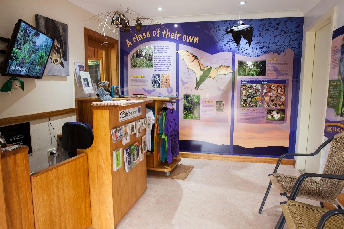 inside the bat hospital visitor centre