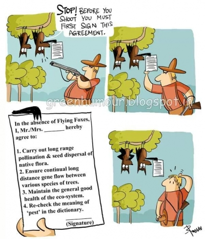 This cartoon discusses the ecological services provided by flying foxes.