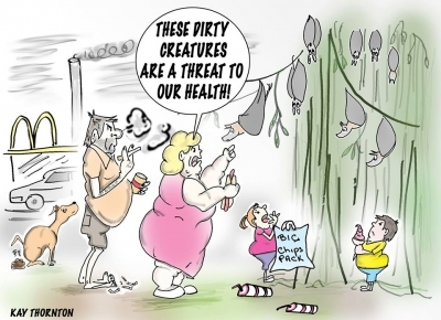 Cartoon commenting on health risks associated with flying foxes